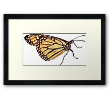Monarch Butterfly Print Framed Print