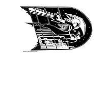 Danny Phantom: Protector Photographic Print