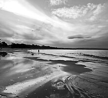 Solitude by Nicole Doyle