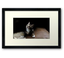 Will the Starz be out Tonite? Framed Print