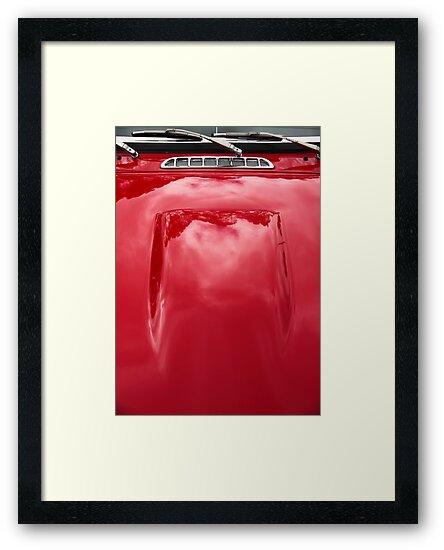 Dashing Red by Stephen Mitchell