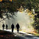 Walking in the light by jchanders