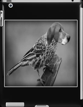 ☝ ☞ HE'S A BIRD DOG IPAD CASE ☝ ☞ by ✿✿ Bonita ✿✿ ђєℓℓσ