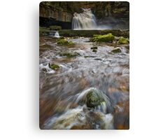 Cauldron Falls (2) Canvas Print