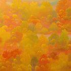 Sunshine in Autumn by David Snider