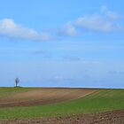 The Lone Tree, Vojvodina by Kevin Shannon