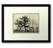 Smoky ! Framed Print