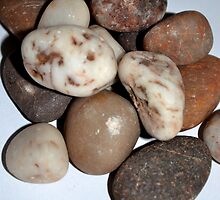 Pebbles by Nadeesha Jayamanne