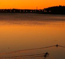 Lunenburg sunrise with ducks Sticker