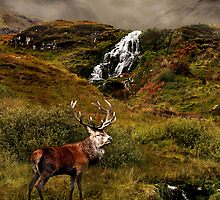 Monarch of the Glen by Gary Murison