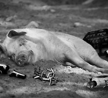 A Pig of a Hangover by Gary Murison