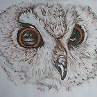 Owl by KarenJI1962