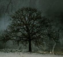 midwinter tree by potty