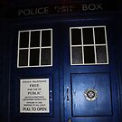 Doctor Who Tardis Door - Tom Baker by Katherine Case