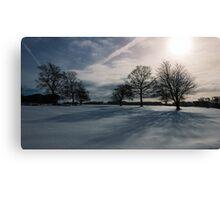 Winter Shadow Canvas Print