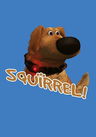 squirrel! by daveb72