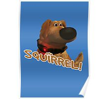 squirrel! Poster