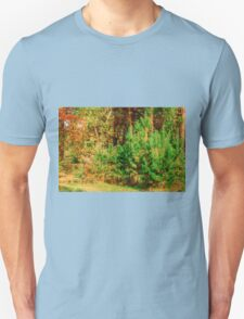 Young shoots of pine Unisex T-Shirt