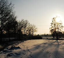 Winter by Joey Kuipers