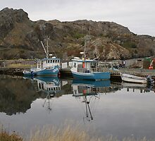 Boats at Brigus by Jean Knowles