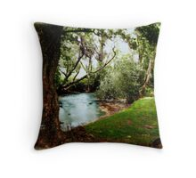Our Place... In The Walk... Throw Pillow