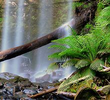 Hopetoun Falls Victoria. by Julie  White