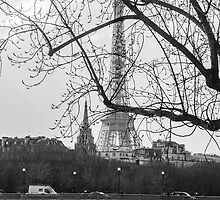 Eiffel Tower, Paris by David Mapletoft