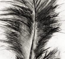 Feather in Charcoal Sticker