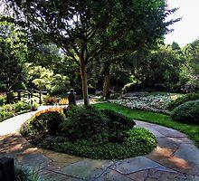 Winery Garden 9 by vigor