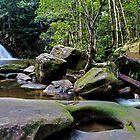 Waitui Falls by Lindsay Woolnough (Oram)