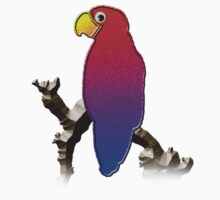 Parrot by jkartlife