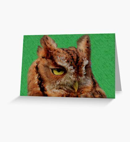 Portrait of an Eastern Screech Owl Greeting Card