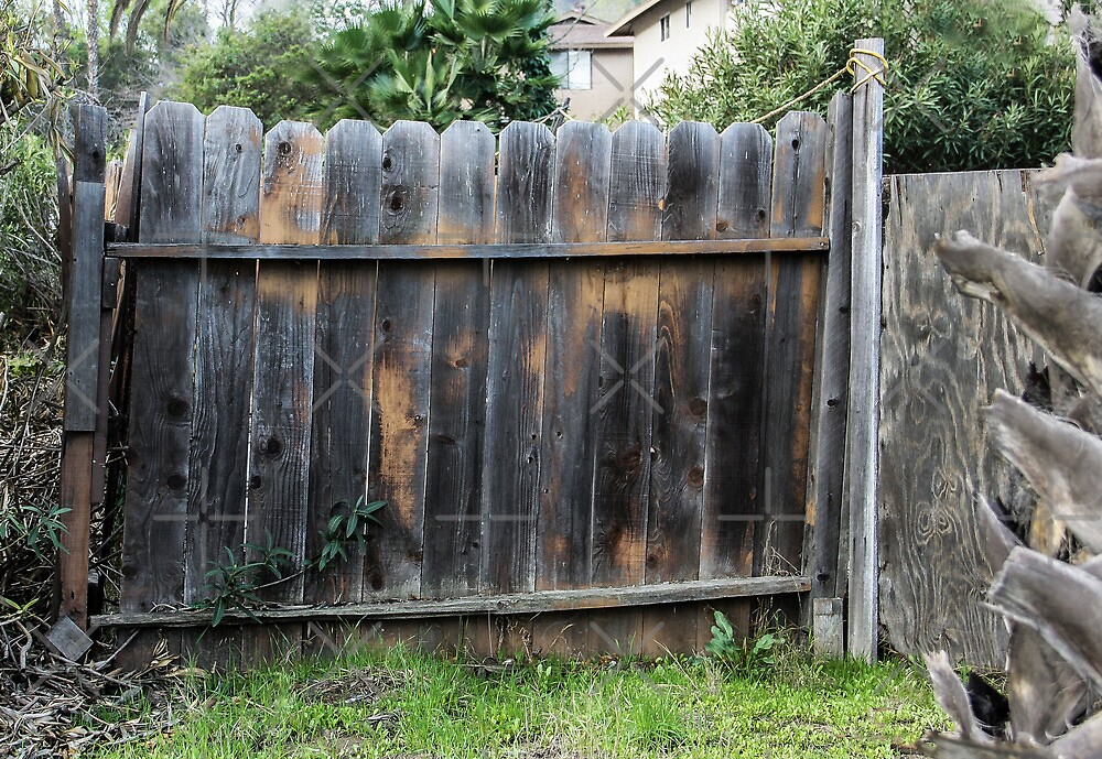 Old Fence by Heather Friedman