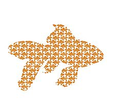 School of Goldfish Pattern Photographic Print