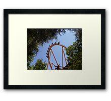 Tatsu Roller Coaster in the Trees Framed Print
