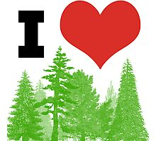 I Heart Pine Trees / Forest / Nature Photographic Print
