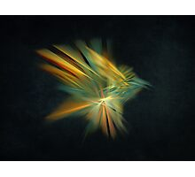 Magic Bird Fractal Art Photographic Print
