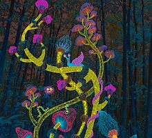 Magic mushrooms by Ruta Dumalakaite
