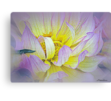 Perfectly Flawed Canvas Print