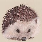Hedgehog by MagsWilliamson