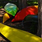 Singing Colors by Pamela Phelps