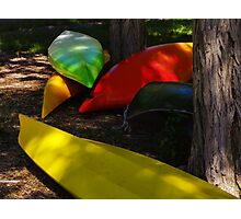 Singing Colors Photographic Print