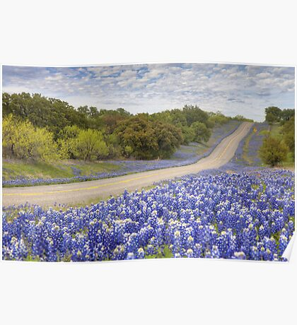 Texas Bluebonnet Highway in the Texas Hill Country Poster