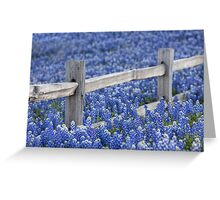 Texas Bluebonnets and an old Wooden Fence Greeting Card