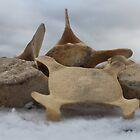 Whale bones on snow by Porridgewog32