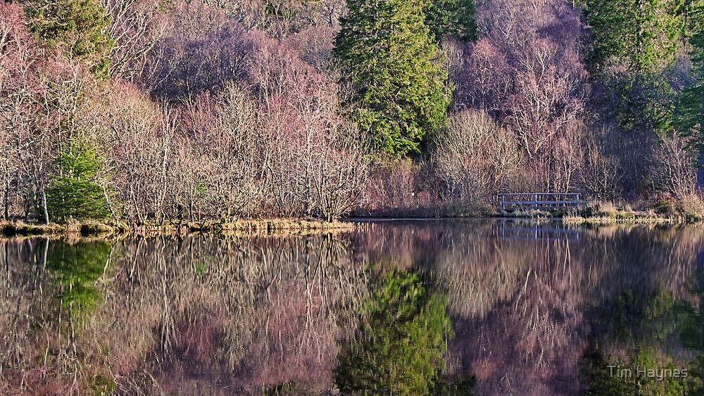 Reflections, Inverawe by Tim Haynes