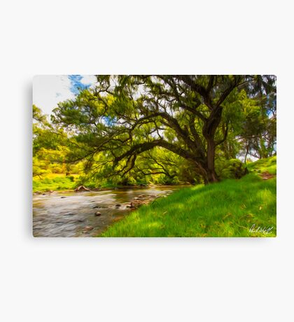 The Tomebamba Canvas Print