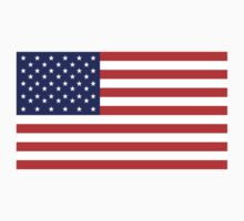 American Flag Stars & Stripes pure & simple USA by TOM HILL - Designer