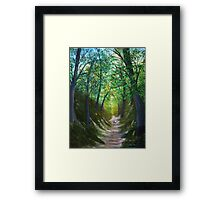 Country Trail Framed Print