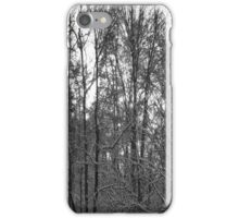 Snowy Trees iPhone Case/Skin